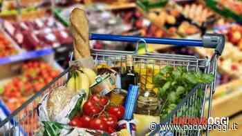Carmignano di Brenta: da giovedì nove aprile si potranno richiedere i buoni spesa - PadovaOggi