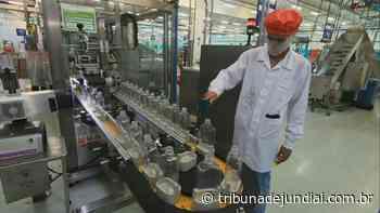 Empresa de perfumes de Itupeva vai produzir mais de 3 milhões de frascos de álcool em gel em abril - Tribuna de Jundiaí