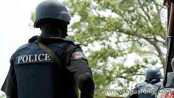 Police confirm death of young man in Delta - Vanguard