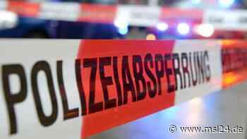 Warendorf: Mann schlägt mit Hammer auf Nachbarn ein – schwer verletzt   Warendorf - msl24.de