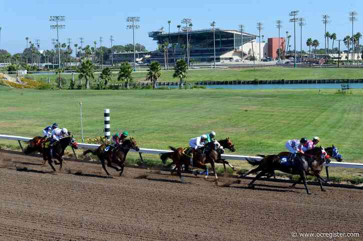 Racehorse dies while training at Los Alamitos; 2-year-old had never raced