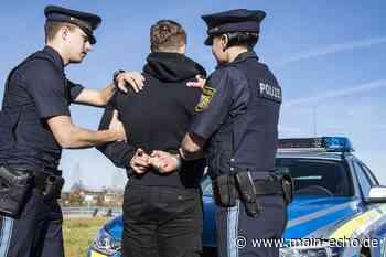 Angriff auf Polizisten in Tauberbischofsheim endet in Zelle - Main-Echo