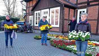 Kalefeld: Kirchengemeinde verschenkt 1200 Pflanzen - HNA.de