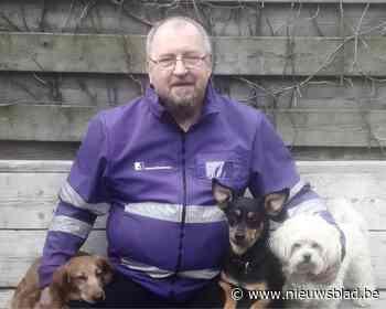 Gemeenschapswachten leren dierenleed herkennen (Mechelen) - Het Nieuwsblad