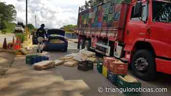 Mais de 800 kg de maconha são apreendidos em Patos de Minas - Triângulo Notícias - TN