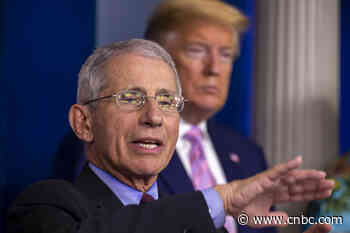 Coronavirus outbreak should begin to turn around after 'bad week for deaths,' White House advisor Dr. Fauci says - CNBC