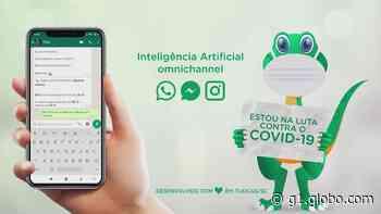 Plataforma divulga serviços em Tijucas durante a pandemia de coronavírus - G1