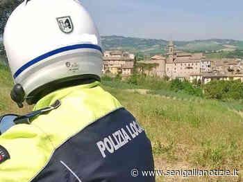 Controlli della Polizia Locale, raffica di sanzioni a Falconara Marittima - Senigallia Notizie