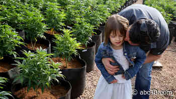 Charlotte Figi, young girl who pioneered medical marijuana for epilepsy, dies of coronavirus complications