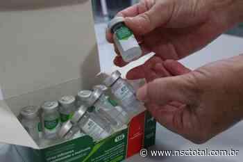 Novas doses de vacina contra a gripe chegam a Blumenau e prefeitura libera agendamento   NSC Total - NSC Total
