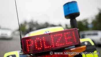 Polizeistreife in Hameln zwingt Dinosaurier zum Ausziehen