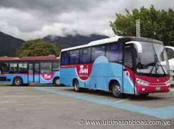 Suspendido servicio de transporte público suburbano en Higuerote - Últimas Noticias
