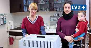 Coronavirus - Abstand halten: So gehen Tierärzte in und um Oschatz mit den Corona-Maßnahmen um - Leipziger Volkszeitung