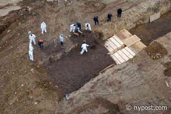 NYC to begin burying coronavirus victims on Hart Island potter's field - New York Post