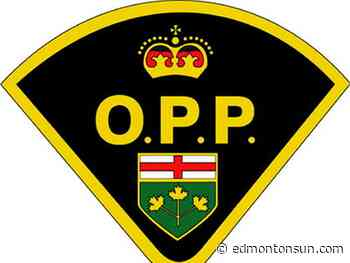 OPP charge three for shooting pellet gun at joggers in Clarence-Rockland - Edmonton Sun
