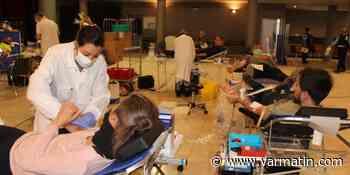 A Puget-sur-Argens, la collecte de sang a été fructueuse, malgré le confinement - Var-Matin