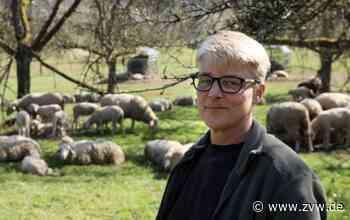 Schafe in Schorndorf-Weiler - Junge Rasenmäher erobern die Wiesen - Zeitungsverlag Waiblingen