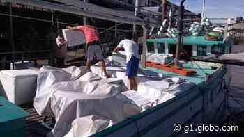 PF apreende 500 caixas de cigarros contrabandeados em barco, em Barcarena - G1