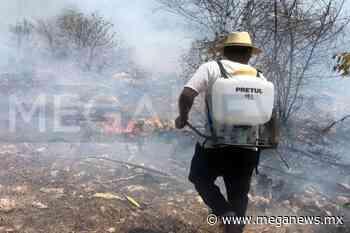 Descuidos, principal causa de los incendios forestales en Oxkutzcab - Meganews