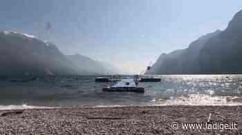 Le spiagge di Riva del Garda con le anatre protagoniste come non le avete mai viste - l'Adige - Quotidiano indipendente del Trentino Alto Adige
