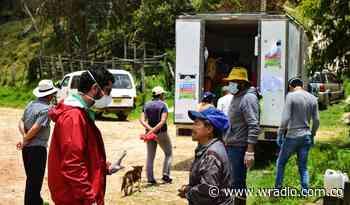 Con placitas de mercado móviles y virtuales: Paipa, Tibaná y Tunja no se detienen - W Radio