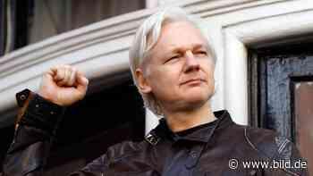 Wikileaks-Gründer Julian Assange wurde heimlich Vater von zwei Söhnen - BILD