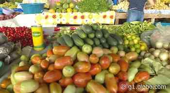 Prefeitura libera funcionamento de feiras livres no município de Araripina - G1