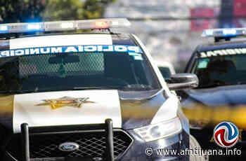 Un palenque clandestino fue detectado en SLRC - AGENCIA FRONTERIZA DE NOTICIAS