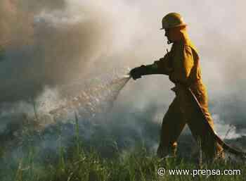 Emiten decreto que prohíbe las quemas en el distrito de Macaracas - La Prensa Panamá