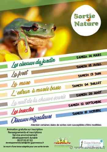 Sortie Nature Gujan-Mestras 18 avril 2020 - Unidivers