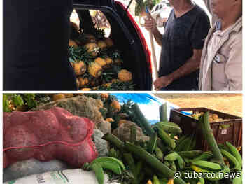 En Dagua los campesinos no botan, donan las cosechas a los más necesitados - TuBarco