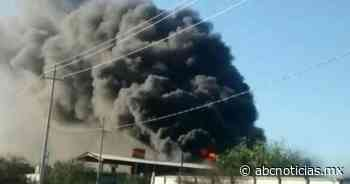 Se incendia asfaltera en Abasolo - ABC Noticias MX