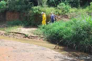 Bombeiros resgatam corpo encontrado à beira do córrego sumidouro, em Ibirité - O Tempo