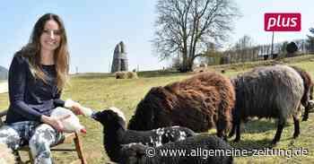 Bildhauerfamilie Kubach-Kropp hält sich eine Schafherde - Allgemeine Zeitung