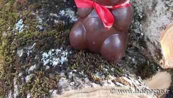 Gramat. Les oursonnes du centre animalier en chocolat - LaDepeche.fr