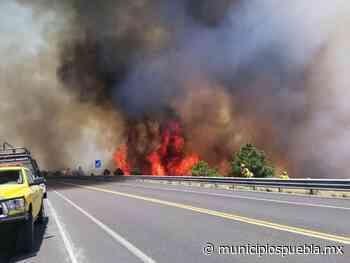 Cierran autopista Amozoc-Perote por incendio en Libres - Municipios Puebla