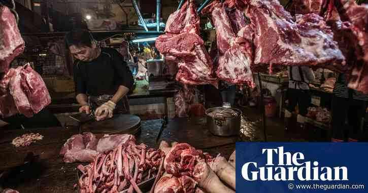 'Mixed with prejudice': calls for ban on 'wet' markets misguided, experts argue