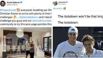 Novak Djokovic's Challenge, John Isner's Flashback: Tennis At Home Roundup - ATP Tour