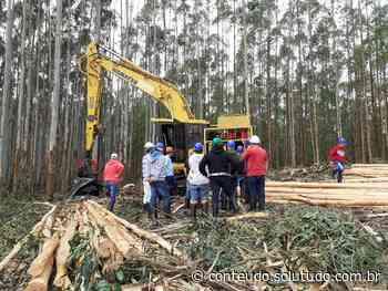 Agilis Treinamentos transforma profissionais em Itatinga - Solutudo - A Cidade em Detalhes