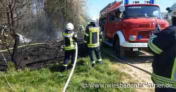 Feuerwehr Oestrich-Winkel löscht zwei Flächenbrände - Wiesbadener Kurier
