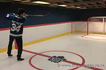 Unbe-Leaf-able: Clyde River fan's epic transformation of basement goes viral - The Guardian