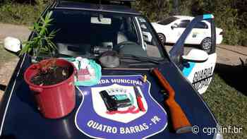 Quatro jovens são presos após furto a brechó em Quatro Barras - CGN