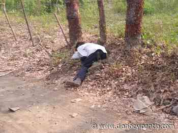 Hallan a un hombre muerto en Catemaco - Diario Eyipantla