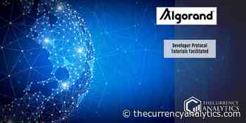 Algorand 250M ALGO to Fund Vibrant Ecosystem Development Developer Protocol Tutorials Facilitated - The Cryptocurrency Analytics