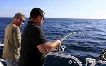 Confinement dans les Landes : des pêcheurs interpellés à Capbreton et Tarnos - Sud Ouest