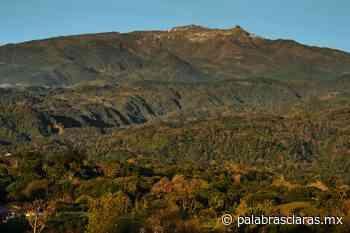 Habitantes de Sierra Alta, en Perote denuncian intento de desalojo - PalabrasClaras.mx