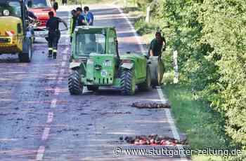 Kurioses aus Affalterbach - Unmengen Rote Beete sorgen für Straßensperrung - Stuttgarter Zeitung