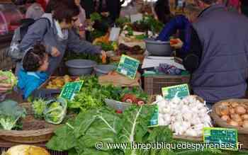 Serres-Castet : le marché hebdomadaire rouvre ce samedi - La République des Pyrénées