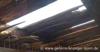 Marodes Dach: Tierheim in Remagen braucht Hilfe - General-Anzeiger