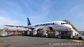 Cinq tonnes de matériel médical ont décollé de Lesquin pour l'hôpital d'Ajaccio - La Voix du Nord